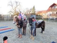 Pferde an der Schule - Lernen mit Pferden